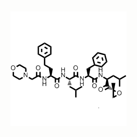 Carfilzomib, Proteasome Inhibitor