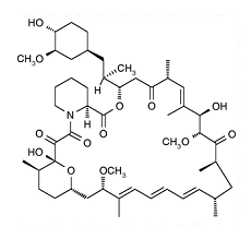 Rapamycin, mTOR inhibitor