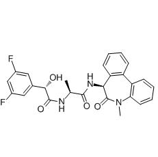 LY411575, γ-secretase Inhibitor