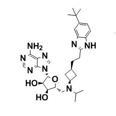 EPZ-5676 --- DOT1L inhibitor