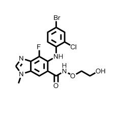 AZD6244 (Selumetinib), MEK Inhibitor